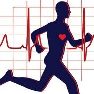 ورزش و تمرینات درمانی - بهداشت و ورزش - سلامت و تندرستی